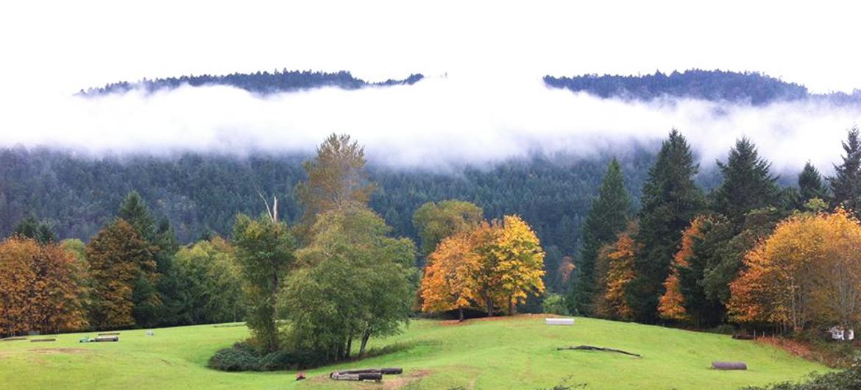 panorama farm